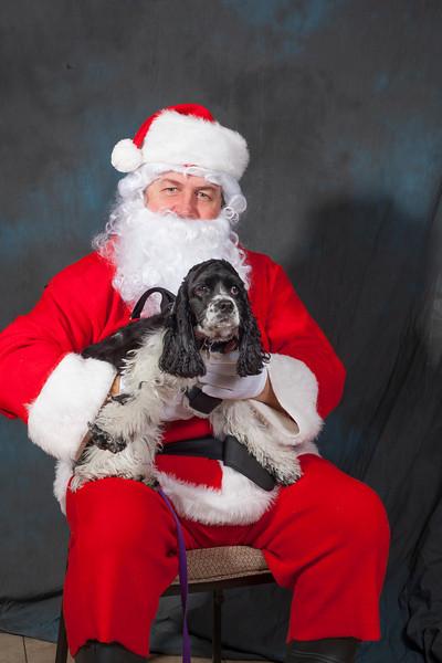 Santa Pictures 2013